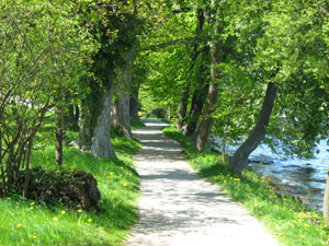 Path alongside Lake Starnberg, Bernried, Germany