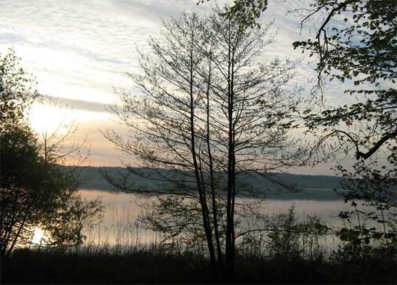 Morning Sunrise banks of Lake Starnberg, Bernried, Germany